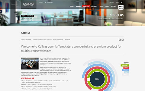 Kallyas Template About us page screenshot